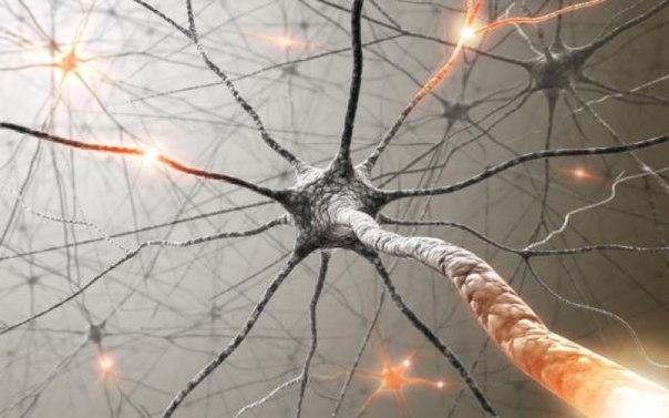 Сбой в работе нервной системы как причина зуда в пятках